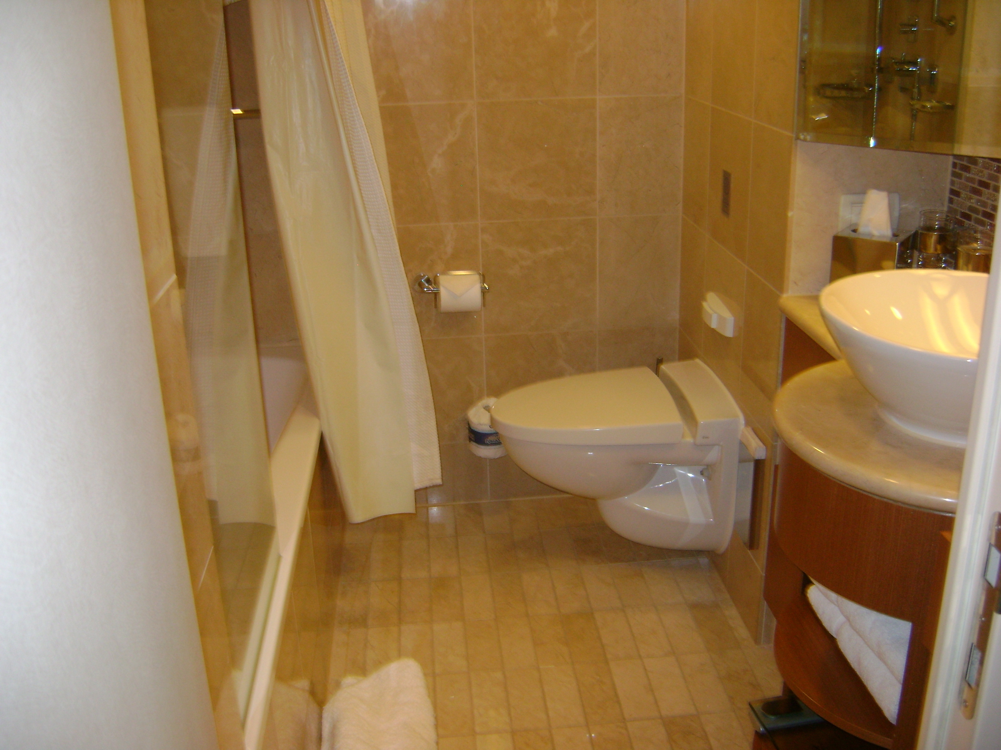 Celebrity Silhouette- Accessible Balcony Cabin Bathroom ...