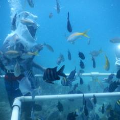 Philipsburg, St. Maarten - Sea Trek