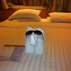 Our cool pet elephant..courtsey of our cabin attendant!