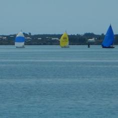 Beautiful bay full of colorful sailboats.