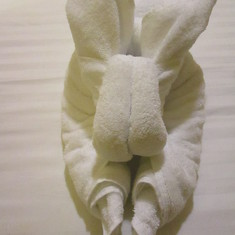 Towel Bunny by Edward