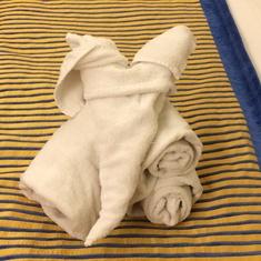 Towel aminal