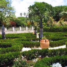 Bermuda Botanical Garden picture