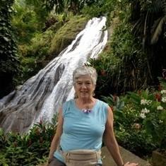 Jamaica tropical garden