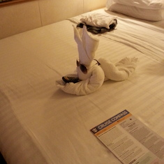 """just plain """"COOL"""" from housekeeping."""