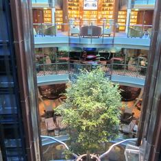 Live tree in atrium