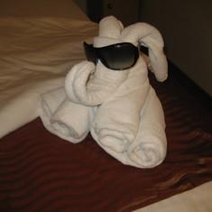 Great Towel Animals