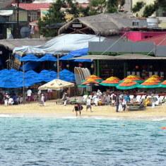 Cabo San Lucas, Mexico - The Office Bar and Mango Bar