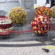 flower globes for Fatima festival, Madeira