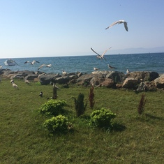 Sinop, Turkey - karakum way