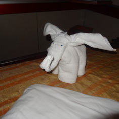 I loved the towel animals!
