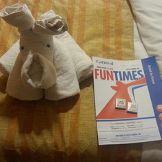 towel animals left a turn down service