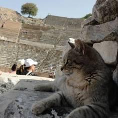 Izmir, Turkey - Ephesus