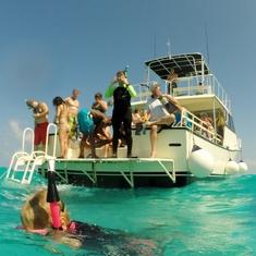 Sting Ray City-Cayman Island