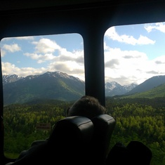 On the ride from Seward to Anchorage