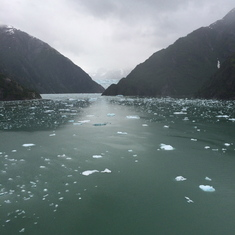 Cruise Sawyer Glacier