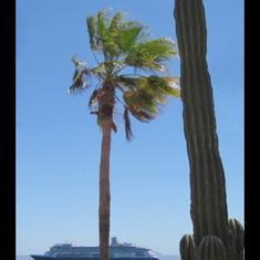 Cabo San Lucas, Mexico - Loreto Mexico
