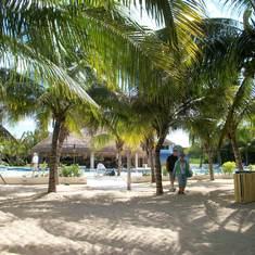 Cozumel, Mexico - Paradise Beach, Cozumel
