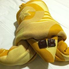 Towel animal, night one. A turtle?