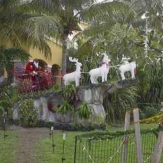 Rasta Klaus in St. Maarten