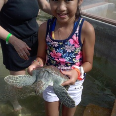 George Town, Grand Cayman - She actually caught and held a real live turtle (Cayman's Turtle Farm)