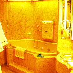 Whirl Pool Hot Tub in Master Bathroom of Penthouse Suite, Westerdam