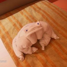 Towel frog