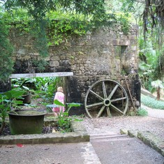 Ruins Sugar Plantation Jamaica