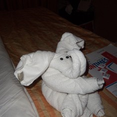 Another towel animal in the room!