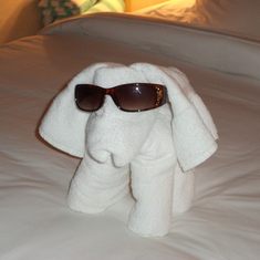 One of many towel animals