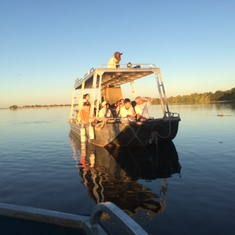 Cruising the Chobe seeing elephants, hippos